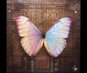 'Butterfly' - James Chiew